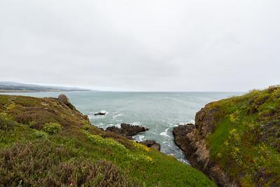 Near Pigeon Point Lighthouse. Pescadero, CA, USA
