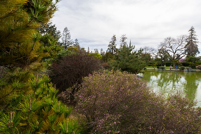 Japanese Friendship Garden (Kelley Park) - San Jose, CA, USA