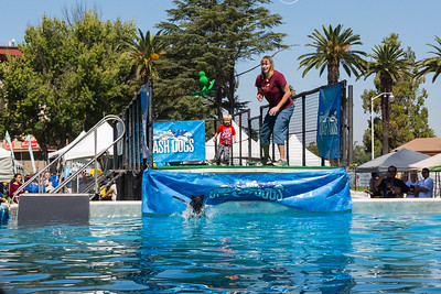 Splash Dogs. Bay Area Pet Fair 2017 - Alameda County Fairgrounds - Pleasanton, CA, USA