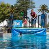 Splash Dogs. Bay Area Pet Fair 2017 - Alameda County Fairgrounds - Pleasanton, CA, USA