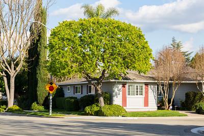 Pleasanton, CA, USA