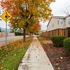 Autumn Foliage. Pleasanton, CA, USA