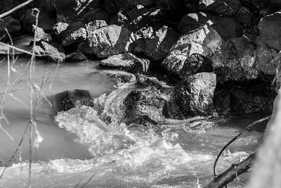 Arroyo Del Valle Creek - Pleasanton, CA, USA