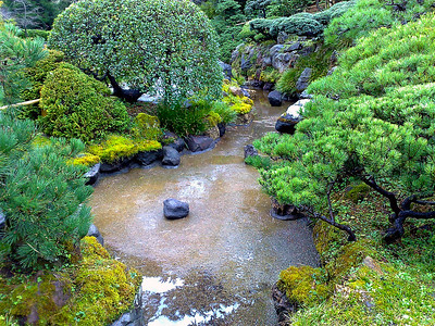 Japanese Tea Garden - San Francisco, CA, USA