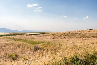 West Wildlife Overlook (Tule Lake National Wildlife Refuge). Tulelake, CA, USA
