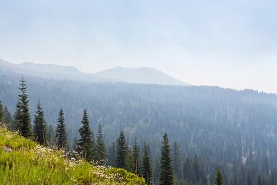 Shasta National Forest - Mount Shasta, CA, USA
