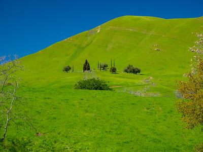 Rose Hill Cemetery. Nortonville Road. Black Diamond Mines Regional Preserve. Antioch, CA, USA