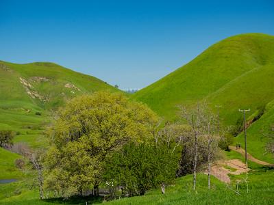 Windmills in Solano County, CA. Somersville Staging Area. Black Diamond Mines Regional Preserve. Antioch, CA, USA