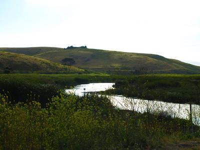 Coyote Hills Regional Park - Fremont, CA