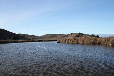 Coyote Hills Regional Park - Fremont, CA, USA