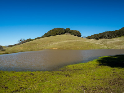 Whipsnake Trail. Morgan Territory Regional Preserve - Contra Costa County, CA, USA