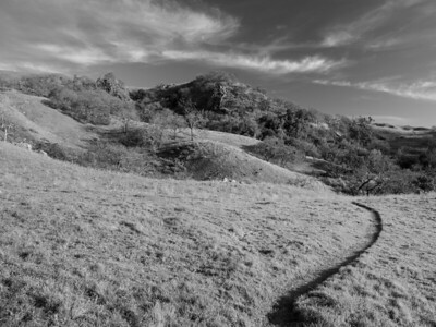 McCorkle Trail. Sunol Regional Wilderness. Sunol, CA, USA