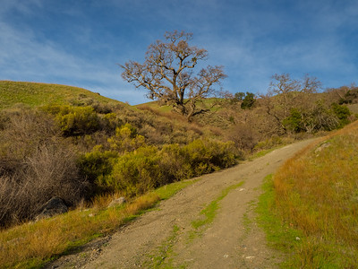 Backpack Road. Sunol Regional Wilderness. Sunol, CA, USA