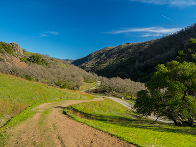 Backpack Road & Ohlone Road. Sunol Regional Wilderness. Sunol, CA, USA