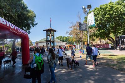 Bay Area Pet Fair 2017 - Alameda County Fairgrounds - Pleasanton, CA, USA