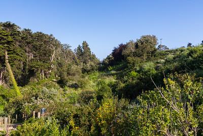 Trail from Torpedo Wharf to Golden Gate Bridge. San Francisco, CA, USA