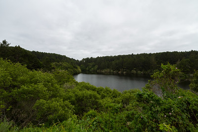 Bass Lake. Coast Trail. Point Reyes National Seashore, CA, USA