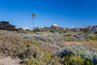 Palace of Fine Arts. Near Crissy Field East Beach & Crissy Field Marsh - San Francisco, CA, USA