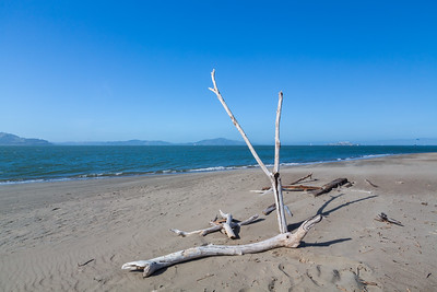 Driftwood & Alcatraz Island (right). Crissy Field East Beach. San Francisco, CA, USA
