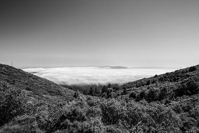 Turnout along Ridgecrest Blvd. Mt. Tamalpais State Park - Marin County, CA, USA