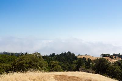 Near Trojan Point. Mt. Tamalpais State Park - Marin County, CA, USA