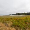Bolinas Lagoon. Wilkins Gulch - Bolinas, CA, USA<br /> <br /> Photo shot on the side of SR-1.