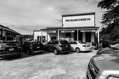 Hog Island Oyster Farm - Marshall, CA, USA