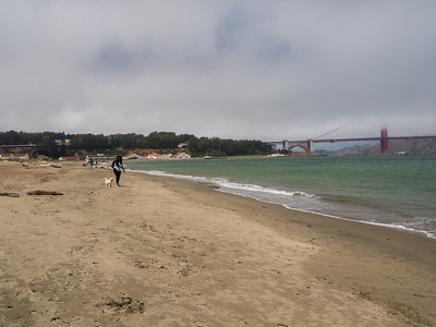Presidio & Golden Gate Bridge. Crissy Field. San Francisco, CA, USA