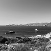 Battery to Bluffs Trail - San Francisco, CA, USA