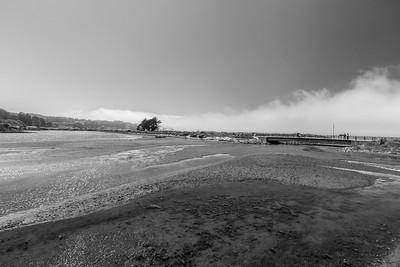 Crissy Field Marsh - San Francisco, CA, USA