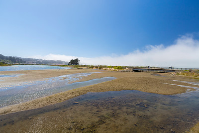 Crissy Field Marsh - San Francisco, CA, USA
