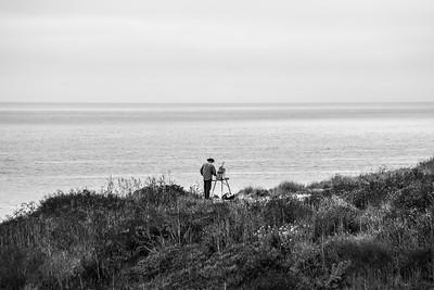 Artist. Shark Fin Cove - Davenport, CA, USA