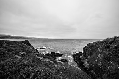Near Pigeon Point Lighthouse. Pescadero, CA, USA
