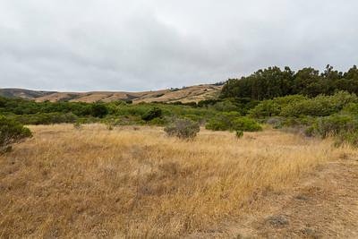 Andrew Molera State Park - Big Sur, CA, USA