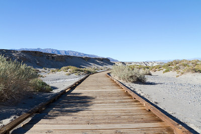 Salt Creek. Death Valley National Park