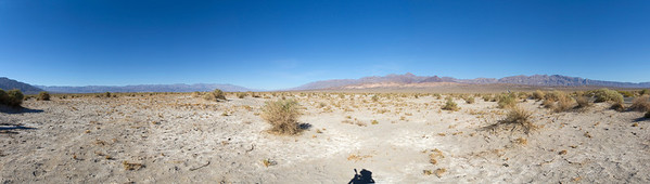 Panorama. Devils Corn Field. Death Valley National Park
