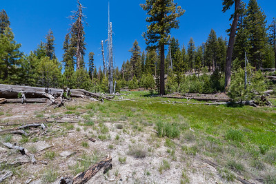 Hiking between Devils Postpile & Rainbow Falls Viewpoint. Ansel Adams Wilderness. Inyo National Forest, CA, USA