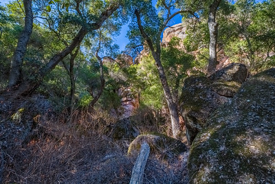 HDR Composition. Hiking towards Bear Gulch Cave from Parking Lot. Pinnacles National Park, CA, USA