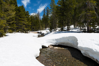 Bridge. Lake Alpine East Shore. Stanislaus National Forest, CA, USA