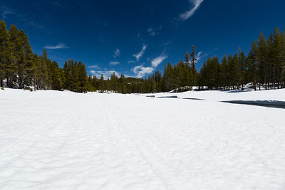 Lake Alpine East Shore. Stanislaus National Forest, CA, USA