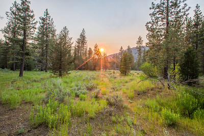 HDR Composition. Sunset. Unnamed Trail. Stanislaus National Forest, CA, USA