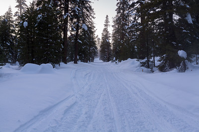 Sunset. SR-4 (Winter Trail). Stanislaus National Forest, CA, USA