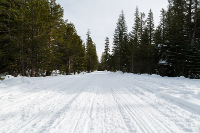 SR-4 (Winter Trail). Stanislaus National Forest, CA, USA