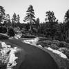 Sunset. Donnell Vista. Stanislaus National Forest, CA, USA