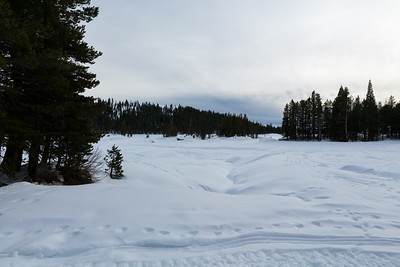 Lake Alpine. Bee Gulch. SR-4 (Winter Trail). Stanislaus National Forest, CA, USA