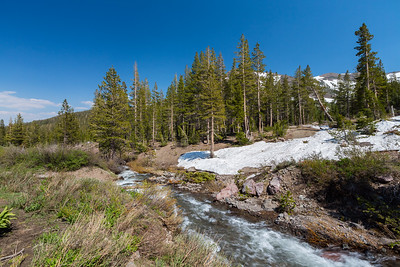 Deadman Creek. Forest Service Route 077 - Towards Leavitt Lake. Humboldt-Toiyabe National Forest, CA, USA