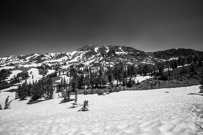 Sonora Peak. Pacific Crest Trail near Sonora Pass. Stanislaus National Forest, CA, USA
