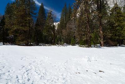 Southside Drive. Yosemite National Park, CA, USA