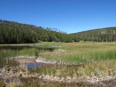 Norris Geyser Basin - Yellowstone National Park