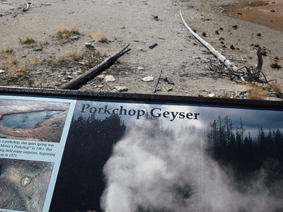 Porkchop Geyser. Norris Geyser Basin - Yellowstone National Park